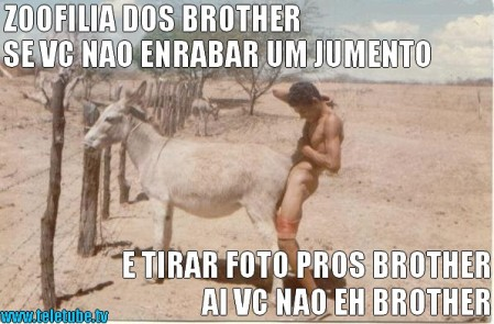 ZOOFILIA DOS BROTHER